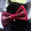 feline formal bow tie