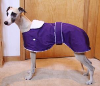Purple whippet coat