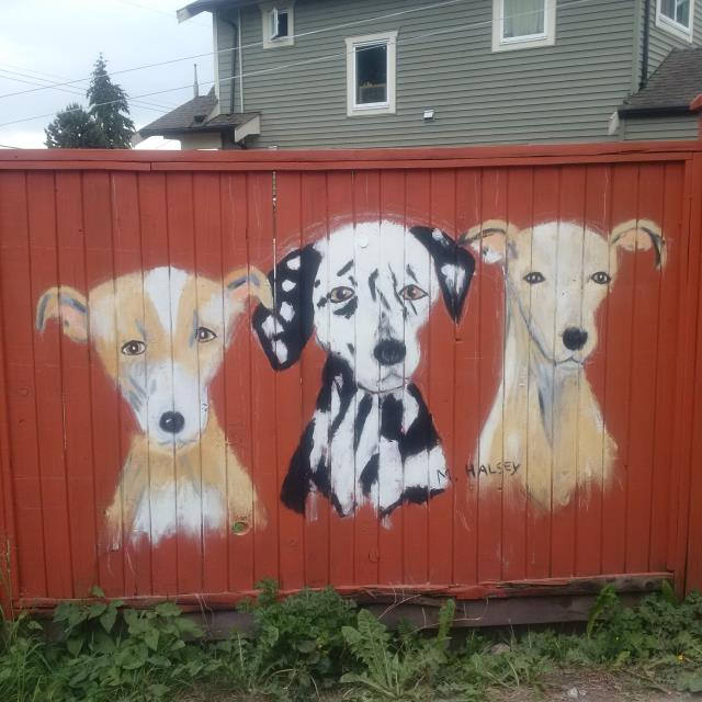 dogs on the fence